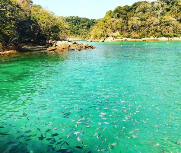 Passeio para Ilha Grande saindo do Rio