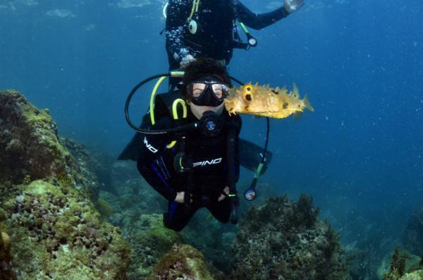 Mergulho com Cilindro em Búzios